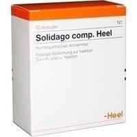 Abbildung Solidago Comp. Heel  Ampullen