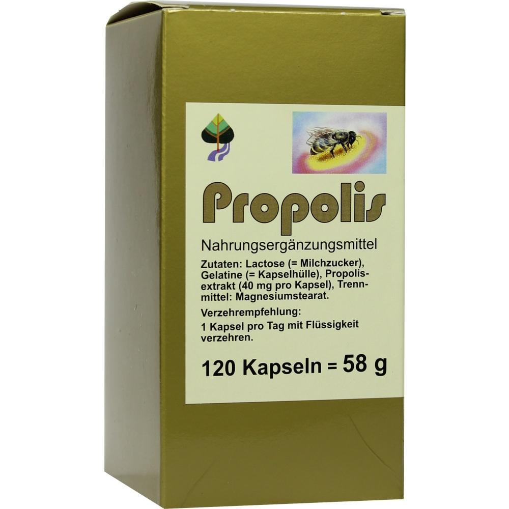 00004848, Propolis, 120 ST