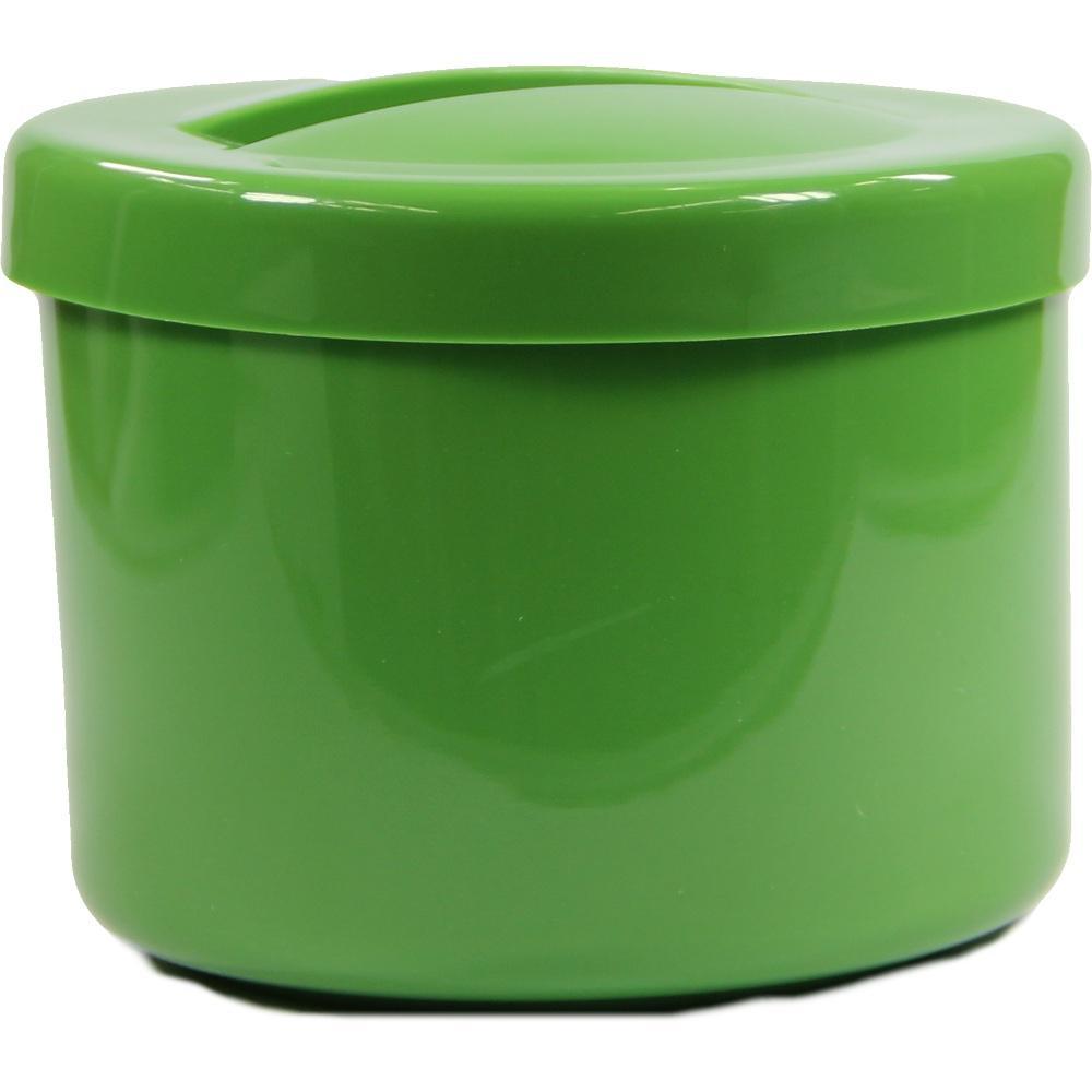 06641639, Prothesenbehälter grün m. Deckel u. Einsatz, 1 ST