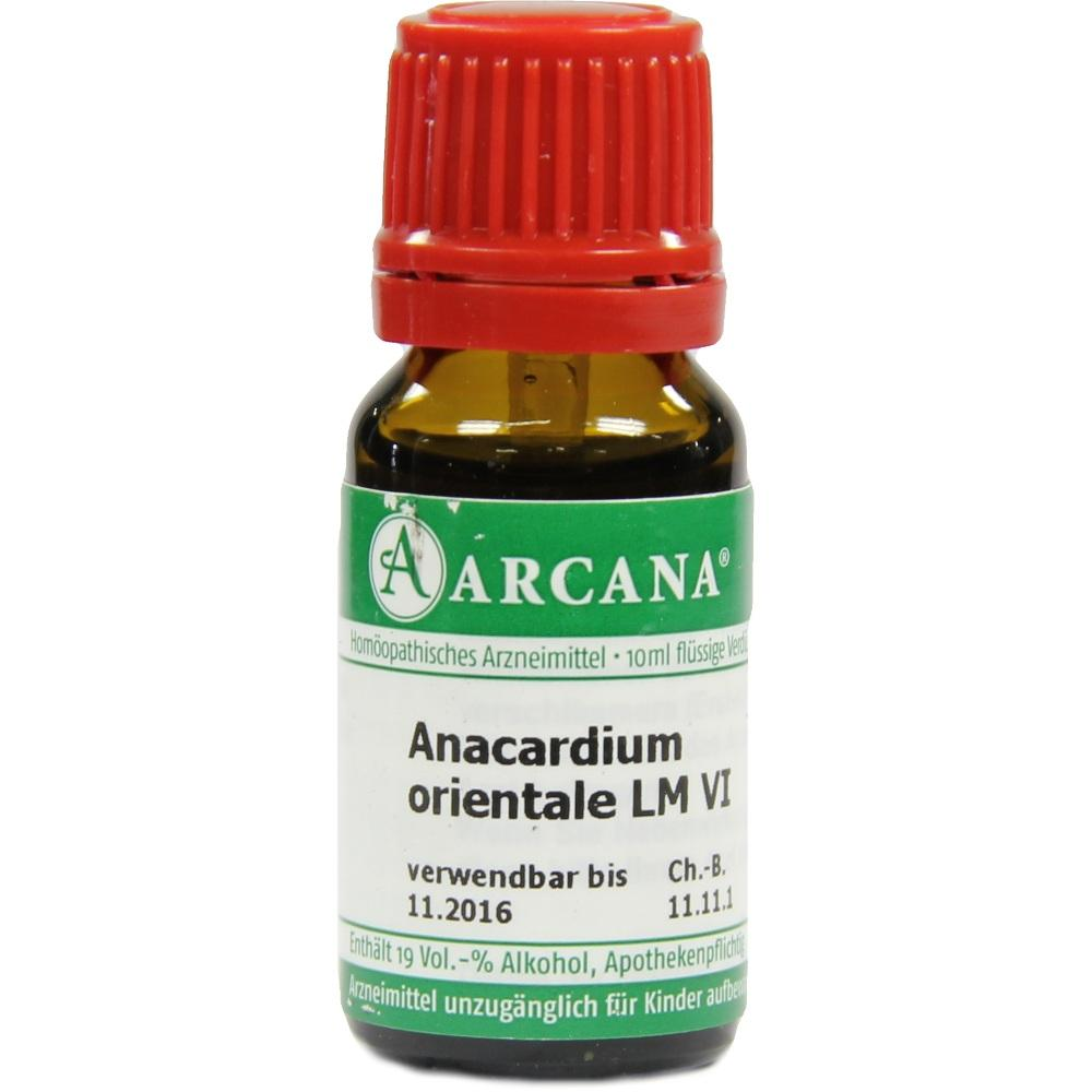 ANACARDIUM ORIENTALE LM 6 Dilution
