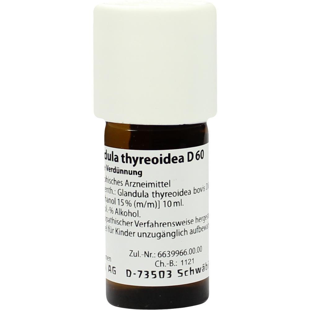 Glandula Thyreoidea D 60 Dilution