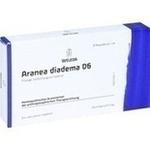 Verpackungsbild(Packshot) von ARANEA DIADEMA D 6 Ampullen