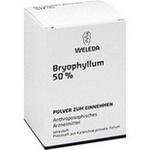 Verpackungsbild(Packshot) von BRYOPHYLLUM 50% Pulver zum Einnehmen