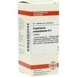 GNAPHALIUM POLYCEPHALUM D 4 Tabletten