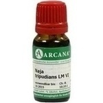 NAJA TRIPUDIANS LM 6 Dilution