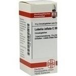 Verpackungsbild(Packshot) von LOBELIA INFLATA C 30 Globuli