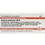 LM ACIDUM sulfuricum VI Globuli