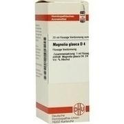 MAGNOLIA glauca D 4 Dilution