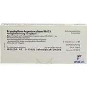 BRYOPHYLLUM ARGENTO cultum Rh D 2 Ampullen
