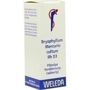 BRYOPHYLLUM MERCURIO cultum Rh D 3 Dilution