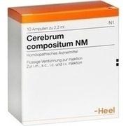 CEREBRUM COMPOSITUM NM Ampullen