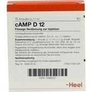 CAMP D 12 Ampullen