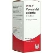 VISCUM MALI ex herba W 5% Oleum