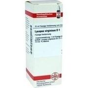 LYCOPUS VIRGINICUS D 1 Dilution