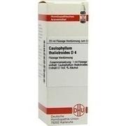 CAULOPHYLLUM THALICTROIDES D 4 Dilution