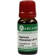 AGARICUS MUSCARIUS LM 6 Dilution