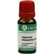 AGARICUS MUSCARIUS LM 18 Dilution
