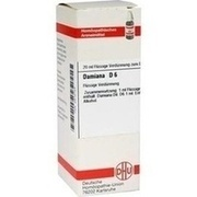 DAMIANA D 6 Dilution