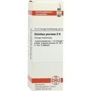 DOLICHOS PRURIENS D 6 Dilution