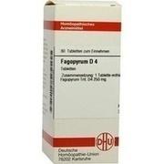 FAGOPYRUM D 4 Tabletten