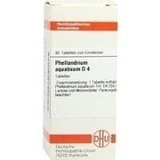 PHELLANDRIUM AQUATICUM D 4 Tabletten