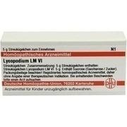 LM LYCOPODIUM VI Globuli