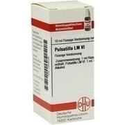 LM PULSATILLA VI Dilution