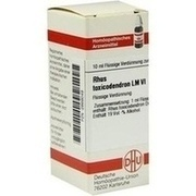 LM RHUS toxicodendron VI Dilution