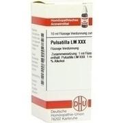 LM PULSATILLA XXX Dilution