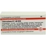 LM TUBERCULINUM GT XVIII Globuli