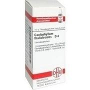 CAULOPHYLLUM THALICTROIDES D 4 Globuli