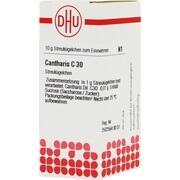 CANTHARIS C 30 Globuli