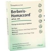 BERBERIS HOMACCORD ad us.vet.Ampullen