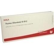 THYMUS GLANDULA GL D 12 Ampullen