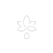 PRAC tic f.kleine Hunde 4,5-11 kg Einzeldosispip.
