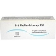 JSO Br 2 Phellandrium cp Globuli