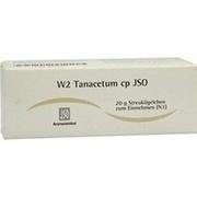 JSO W 2 Tanacetum cp Globuli