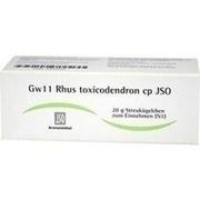 JSO Gw 11 Rhus toxicodendron cp Globuli