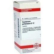 EUPATORIUM PERFOLIATUM D 12 Tabletten