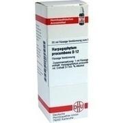 HARPAGOPHYTUM PROCUMBENS D 12 Dilution