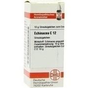 ECHINACEA HAB C 12 Globuli
