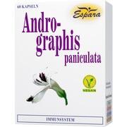 ANDROGRAPHIS paniculata Kapseln