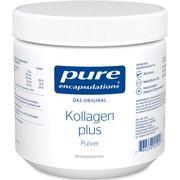 PURE ENCAPSULATIONS Kollagen plus Pulver