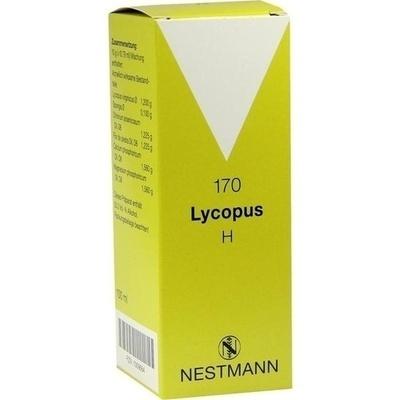 LYCOPUS H Nr.170 Tropfen
