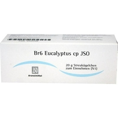 JSO Br 6 Eucalyptus cp Globuli