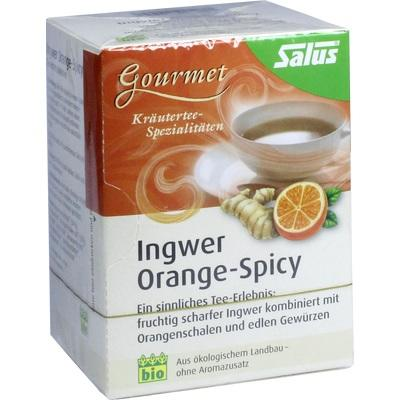 INGWER ORANGE Spicy Tee Salus Filterbeutel