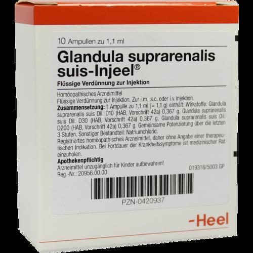 Verpackungsbild(Packshot) von GLANDULA SUPRARENALIS suis Injeel Ampullen