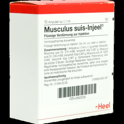 Verpackungsbild(Packshot) von MUSCULUS SUIS Injeel Ampullen