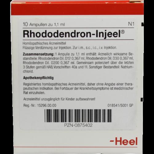 Verpackungsbild(Packshot) von RHODODENDRON INJEEL Ampullen
