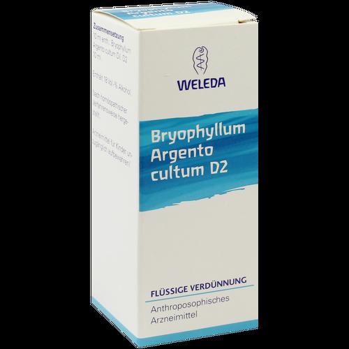 Verpackungsbild(Packshot) von BRYOPHYLLUM ARGENTO cultum D 2 Dilution